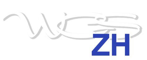 West Coast Swing Zürich logo small